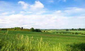 land appraisal